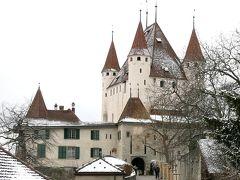 団塊夫婦のスキー&絶景の旅・2019スイス再訪ー(5)中世のお城のあるトゥーンを経て帰路へ