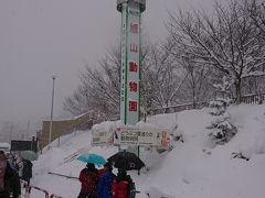 くまと行く冬の北海道その2