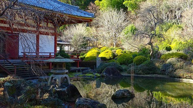 上巻からの続きです。<br /><br />写真は、本堂とその裏手に広がる虚空園の風景と、奥に咲く蝋梅の花。