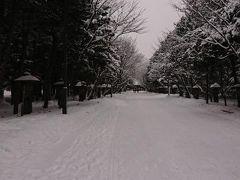 くまと行く冬の北海道その3