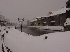 くまと行く冬の北海道その4