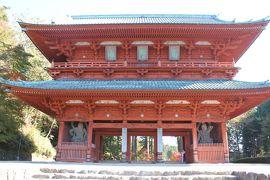 湖東・湖南・高野山・南山城 の寺社を巡る旅 №6(8日目・高野山)