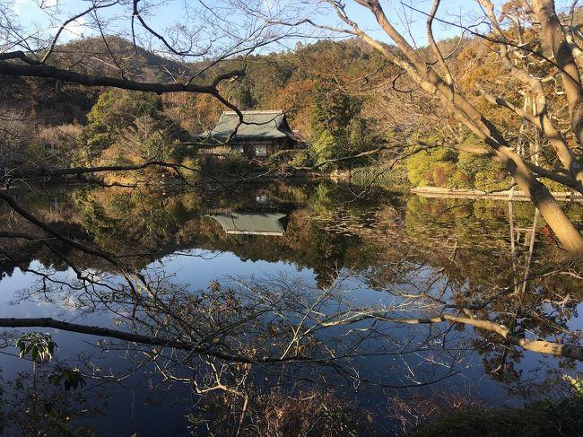 冬の京都堪能!<br />人もそんなにいなくてよいけど、景観は寂しい