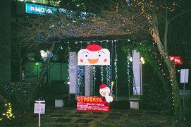 《Jan.2019》あみんちゅ仕事帰りに歩く旅その弐~もりやま冬ホタルとモリーブイルミネーション~
