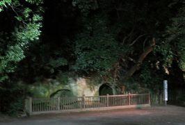 2018暮、九州南東部の続百名城巡り(7/20):12月7日(7):鹿児島城(3):鶴丸城模型、薩摩切子、西郷隆盛洞窟、霧島のホテル