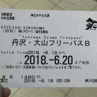 月例登山報告・丹沢鍋割山歩荷訓練。