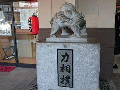 平成最後の天覧相撲観戦