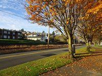 秋のシアトル・タコマの景色