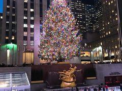 クリスマスシーズンのアメリカ 1日目 ロックフェラーセンターのツリー