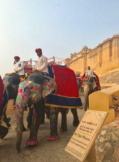 初インド11日目。アンベール城などの城塞と階段井戸