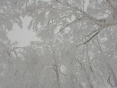 アホアホ姉妹の北海道旅行2019年1月[2日目 : ルスツリゾート(ウェスティン大浴場&風花&マッサージ・イゾラ&イーストMtゲレンデ)・わかさいも本舗 イーストヴィレッジ編]