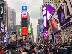 2018_ニューヨーク(2回目)_年末年始の旅(4日目)