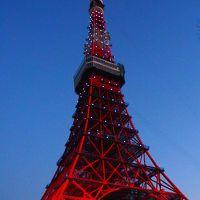 日本一早いお花見とサムライブルーの東京タワー