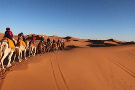 魅惑の迷宮 モロッコ12日間 �砂漠ツアー