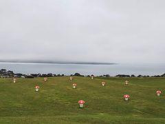 海外一人旅第17段はニュージーランドの大自然に癒される旅 - 3日目(オークランド郊外編)