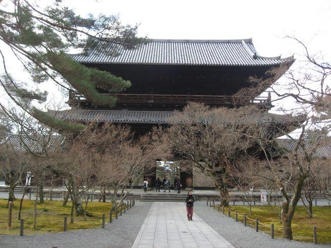京都は見所がありすぎて、行きたいな~とは思いながら、何を見たいのか、何をしたいのかピンとこなかったけど、ネットを見ていたら思いのほか安い日があったのでポチしちゃいました。