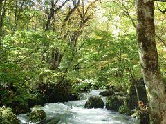 秋の東北周遊(3)憧れ続けた奥入瀬渓流を散策