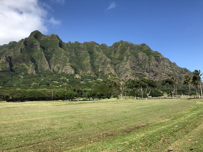 私のハワイ旅行はハネムーンから数えて6度目ですが、近年はもっぱら友人とのハワイ旅行でした。今回は主人が退職したので、今は家でのんびりしています。仕事がサービス業だったこともあり、海外旅行は行けなかったので、ハワイ慣れした私がよかったと思うところへ案内しようとハワイ旅行を選びました。<br />昨年の8月にエクスペディア経由でエアアジアのハワイ便を予約しました。7月にLCCのスクートで友人とハワイに行きLCCでも全然大丈夫だったので、今回もです。ホテルはハワイも正月価格なので最初の2泊はお手頃価格のワイキキサンドヴィラをエクスペディアで予約し、残り3泊はHISでたまたま検索した時に税金やリゾートフィー込みで88000円ていうのを見つけて即予約、もちろん部屋指定なしです。<br />今回の旅行の移動手段はほとんど市バスと徒歩でしたが、天気にも恵まれ思い出に残る良い旅となりました。