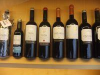 フランス、スペインのバスク地方を訪れる5 ビトリア、リオハのワイナリー訪問