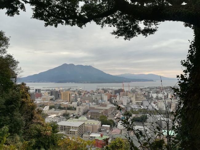 NHK日曜夜8時大河ドラマ・・・・・まるまる一年間見続けたのは何年ぶりだろう?<br />「天と地と」(古っ!)以来?<br />視聴率は振るわなかったらしいが、そして私の周りでもその内容には賛否両論あったけれど、少なくとも私は毎週毎週、日曜日が来るのを楽しみにしながら見続けた「西郷どん」<br />西郷どんゆかりの地を紹介するTV番組を見て・・・・・「そうだ!行ってみよう~」ということで、その土地・土地を廻る旅の計画をたててみました。<br />西郷どんロスの冷めやらぬ1月中旬~西郷隆盛に会いに行ってまいりました。<br /><br />【NOTE】<br /><br />2019/1/7(月)<br />羽田発 JAL649便 13:30 → 鹿児島着 15:30<br />空港バスで市内へ<br />城山ホテル 泊:12,030円(じゃらん 17:00チェックインでお得<朝食付き>)<br /><br />2019/1/8(火)<br />鹿児島市内 西郷どんツアー<br />桜島<br />グリーンリッチ天文館 泊:4,100円(じゃらん シンプル素泊りプラン)<br /><br />2019/1/9(水)<br />川内高城温泉移動<br />梅屋 泊:2,600円(ダイレクト予約 素泊まり)<br /><br />2019/1/10(木)<br />日当温泉移動<br />日当温泉センター 泊:3,600円(ダイレクト予約 素泊まり)<br /><br />2019/1/11(金)<br />高速バスで博多に移動 友人とジョインして博多での目的地<br />新三浦にて水炊き<br />博多グリーンホテル1号館 泊:9,600円/2人(一休 スタンダードツイン 素泊まり)<br /><br />2019/1/12(土)<br />ショッピング<br />鹿児島発 JAL320便 16:00 → 羽田着 17:35<br /><br />チケット:<br />羽田⇔鹿児島、JALマイレージ 12,000マイル<br /><br />*********************************<br /><br />どちらかというと、国内より海外旅行の方が得意なんだけど、年齢のせいかな?あと環境の変化かな?<br />旅番組でも海外よりも国内旅行の方に興味が湧き始めた今日この頃。国内旅行は割高感があってあんまり行ってないのよ。<br />でも泊まろうと思ったらこんな感じで安く泊まれる。そしてなんといっても、宿泊する場合、国内は1人いくら~海外だと1部屋いくら~て感じで、一人旅好きにはホテルにおいては海外はコスパがいまいちなのよね。<br />もう人生も終盤!行ったことのない国内のあちこち、これから行ってみたいな~もちろんお得意の海外も行くけれど・・・・・