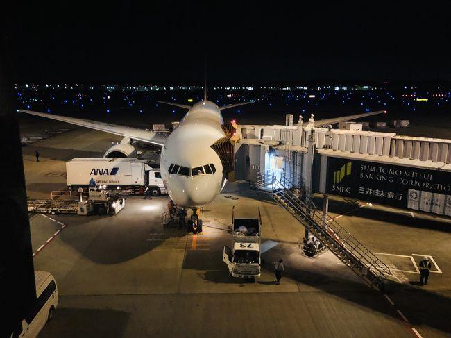 完全にソウルに飽きて、ラウンジをブラブラして、アシアナ航空エコノミークラスで成田に帰国。<br />OZ106仁川15時45分発 成田17時55分着