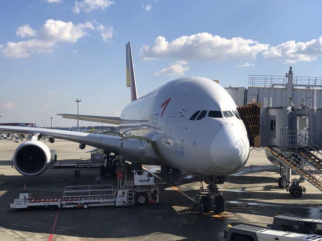 シンガポール出張です。いつもはANA直行便ですがアシアナ航空ビジネスクラスにてお得なキャンペーンがあり利用しました。成田??仁川はA380のはずが…出発3週間前に復路OZ102便がA380からB772へ機材変更。ソロシートなのでとりあえず安心と思いきや、出発前日さらなる機材変更でA330となり残念なフライトになりましたが、サービスや機内食も特に問題なく満足でした。<br />往路:1/27 <br />OZ101 成田→仁川 <br />OZ753 仁川→シンガポール<br />復路:1/31 <br />OZ752 シンガポール→仁川 (2時間ディレイにて乗換時間わずか30分)<br />OZ102 (翌2/1) 仁川→成田<br />