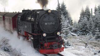冬のメルヘン ドイツ、東フランスを巡る 8(ドイツ編) 4日目① ハルツ狭軌鉄道SLでブロッケン山へ