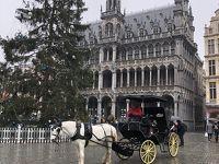 ベルギー&パリ&モンサンミッシェル 母娘旅行 �