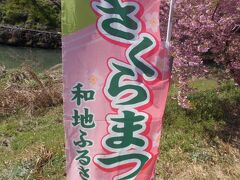 こんな所にも 春を感じる・・東大山の河津桜  @浜松 西区(お花 20の13)TWICE 10本