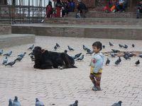 有給+3連休でネパール・カトマンズ一人旅