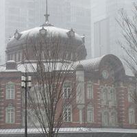 週末散歩 雪の東京散策 東京駅〜浜離宮恩賜庭園〜浅草
