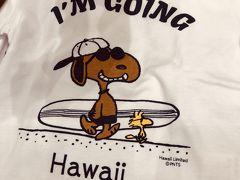 ひとりっぷ in Hawaii P-1