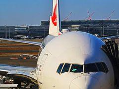 羽田空港10:30 JAL113便 大阪/伊丹行 定刻出発 ☆離陸するANA機も捕捉