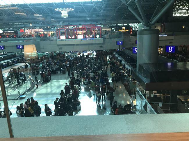 ようやく1年のお勤めを終えて台湾へ。すぐ農歴正月。何とかチケット押えて日本へ。家族はいちご狩りの遠出を期待していたそうですが、よもやインフルA型に感染。すっかり隔離された一週間でした。台湾から日本往復の写真のみ。<br />表紙は九連休+中華航空のスト騒動にごった返す桃園空港