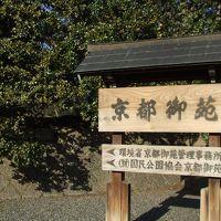 京都ぶらぶらお散歩〜京都御苑とその周辺
