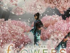 日本一早いお花見 『fLOWERS 東京日本橋2019』~吉祥寺へ