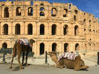 地中海の風に吹かれて…マルタとチュニジアの旅【10】(古代ローマ人の偉業にあっぱれ!エル・ジェム編/チュニジア)