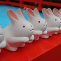 冬の京都1泊2日旅行(猪と兔を巡る旅)1日目