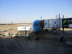 Flight VN301