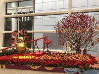 【新年快樂】2泊3日で気軽に香港☆1人旅