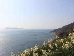 淡路島・灘黒岩の水仙を見に行ってみました。(うずしおクルーズも)