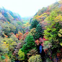 馬籠観光→清里高原→石和温泉→河口湖→善光寺巡り