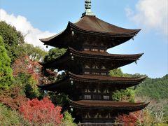 2018年11月 紅葉の山口 その2 瑠璃光寺の五重塔と香山公園