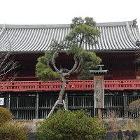 上野の森の探索