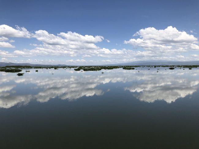 ナイバシャ湖で馬に乗ってサファリ体験!!そして迎える最終日