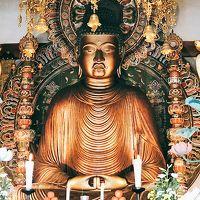 京の冬の旅初公開 転法輪寺と、狛イノシシさんたちが守る護王神社にいってきました。