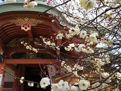 2月、週末京都旅行 センチュリーホテル&ブライトンホテル宿泊
