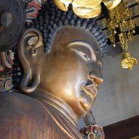 2019晩冬〜京の冬の旅(仁和寺、転法輪寺、善想寺)と東寺の弘法市