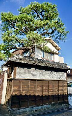 本場の『和牛』を喰らいに初めて、「松阪」まで脚を伸ばす旅~!(本居宣長生家とか、牛銀とか、/松阪/三重県)