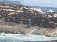 南アフリカのハウト湾